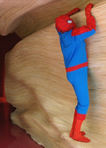 20141002031049_Spiderman_vignette_2.jpg